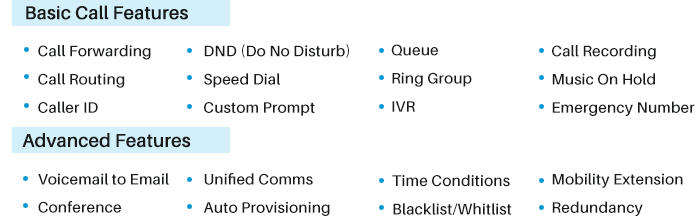 Key Business VoIP Features