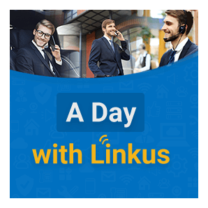 A Day With Linkus