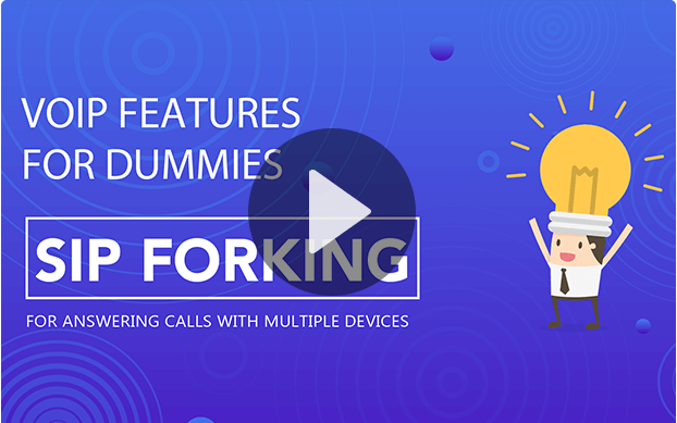 SIP Forking—Multiple IP Endpoins Registration
