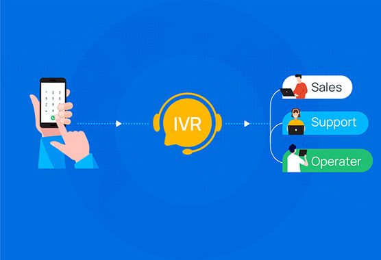 IVR Meaning